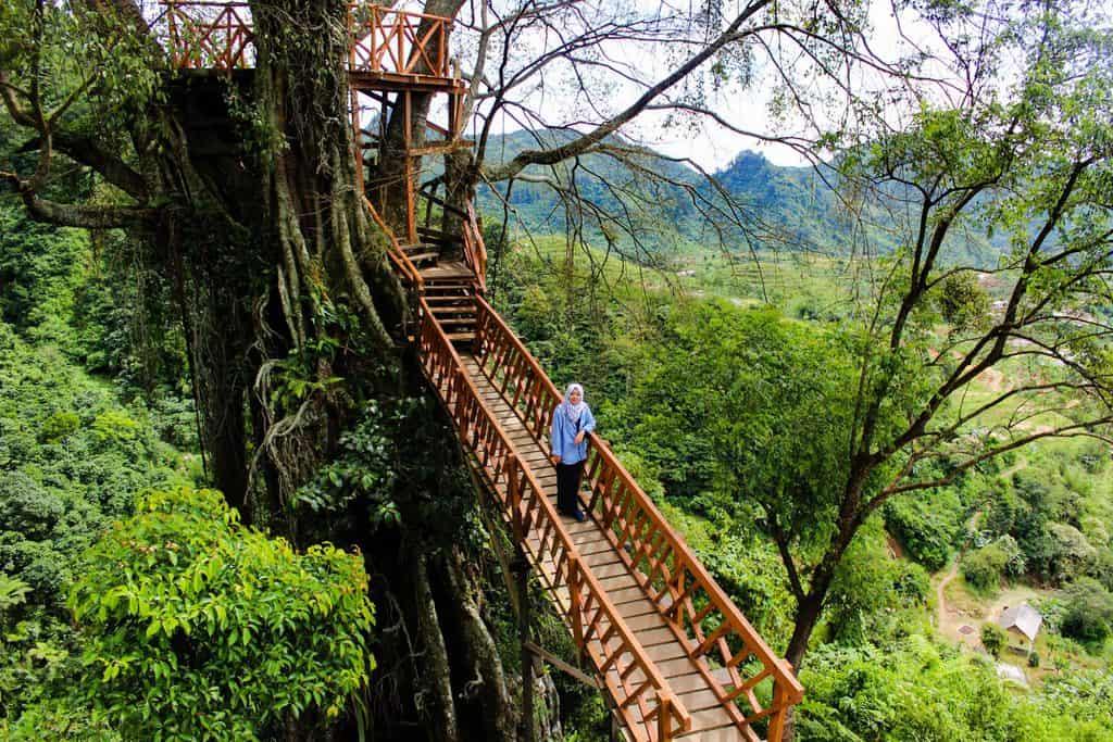 Rumah Pohon dan Jembatan Kayu Gantung Curug Ciherang Jonggol tempat wisata di bogor 2