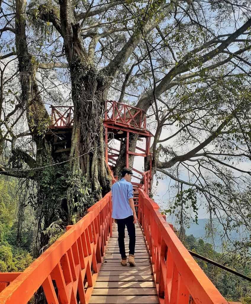 Rumah Pohon dan Jembatan Kayu Gantung Curug Ciherang Jonggol tempat wisata di bogor