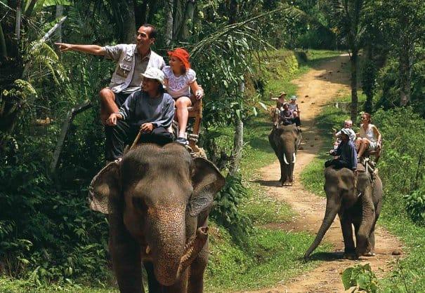 tempat wisata di bali Elephant Safari Park