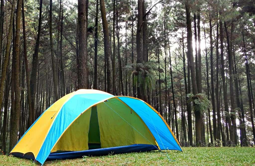 tempat wisata di bogor Gunung Pancar 2