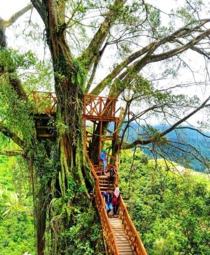 tempat wisata di bogor Rumah Pohon Jonggol