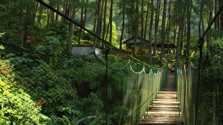 tempat wisata di bogor Suaka Elang Loji