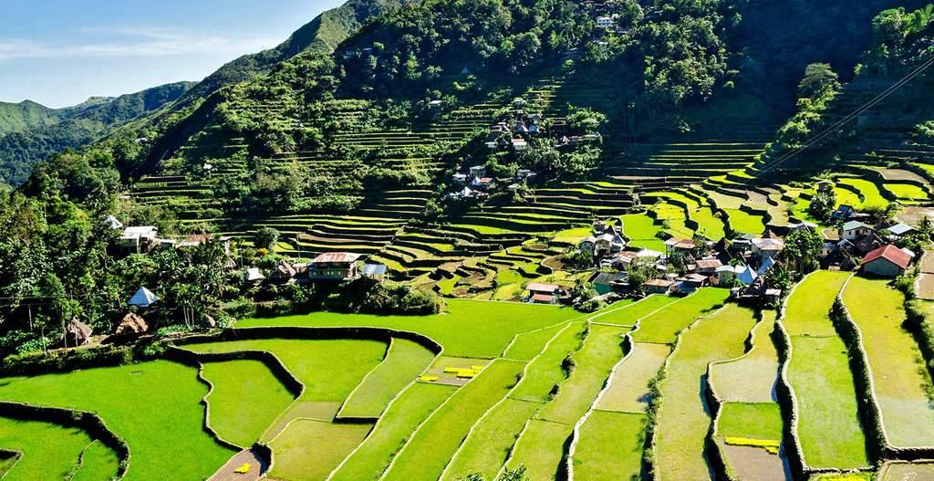 tempat wisata di filipina Banaue Rice Terraces