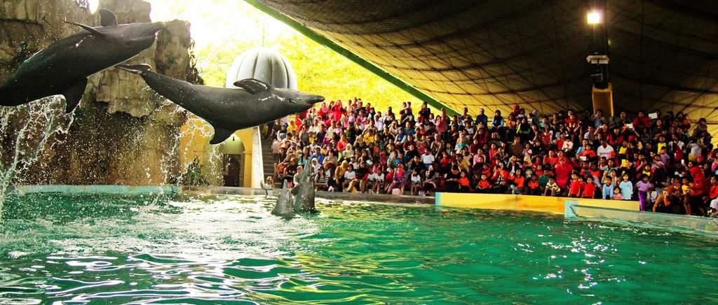 tempat wisata di jakarta Gelanggang Samudra