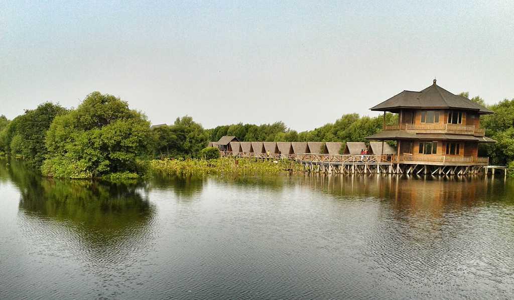 tempat wisata di jakarta Taman Wisata Alam Angke Kapuk