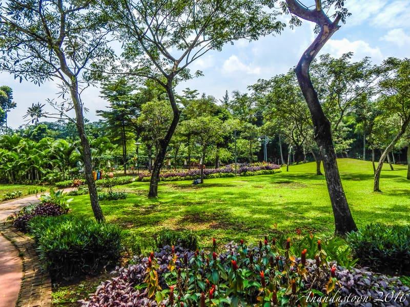 tempat wisata di jakarta taman tabebuya