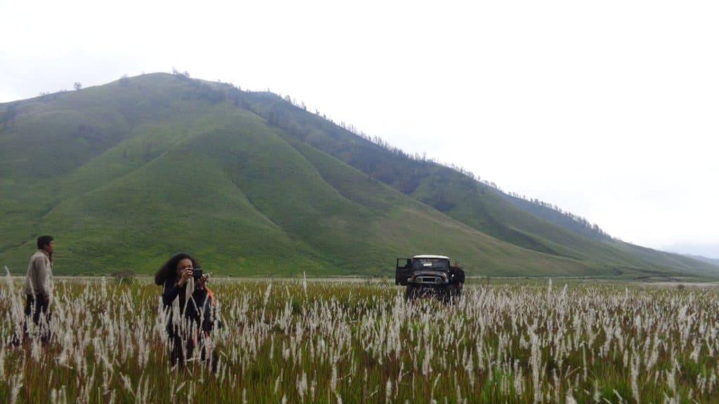 wisata gunung bromo Wisata Padang Rumput Savana