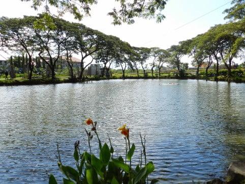 tempat wisata di surabaya Kebun Bibit Wonorejo