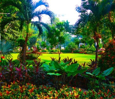 tempat wisata di surabaya Taman Bungkul di Surabaya