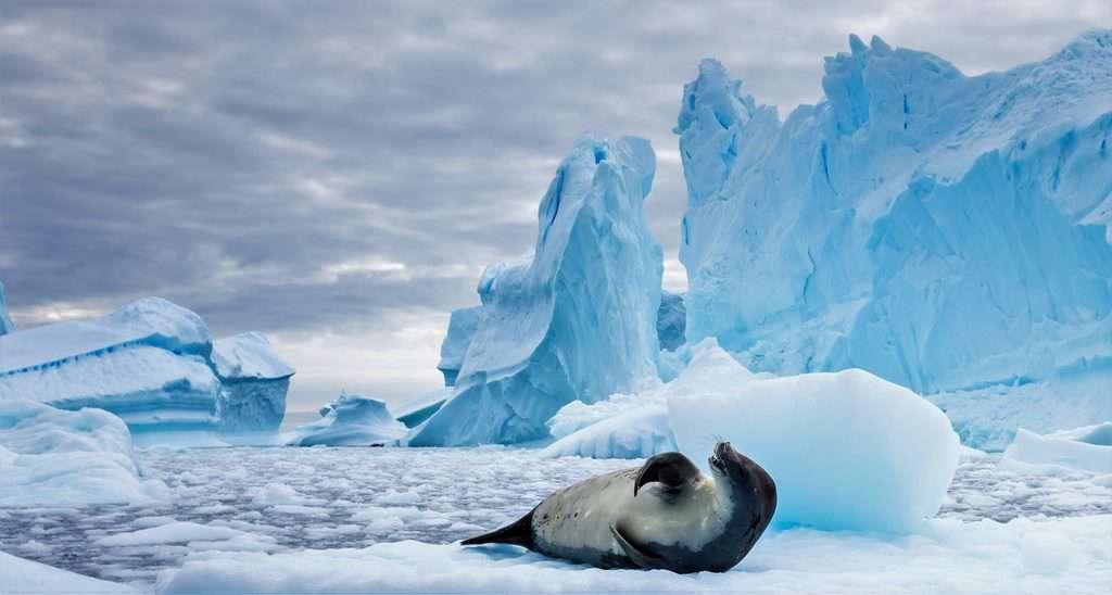 gambar pemandangan indah di luar negeri antartika 2
