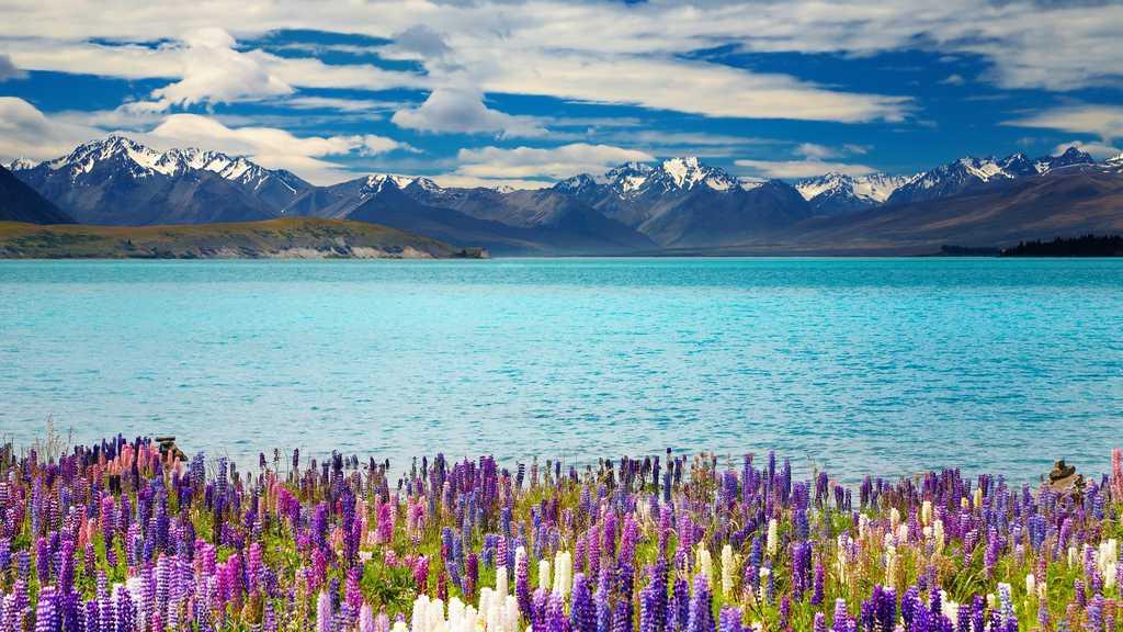 gambar pemandangan indah di luar negeri danau tekapo new zealand