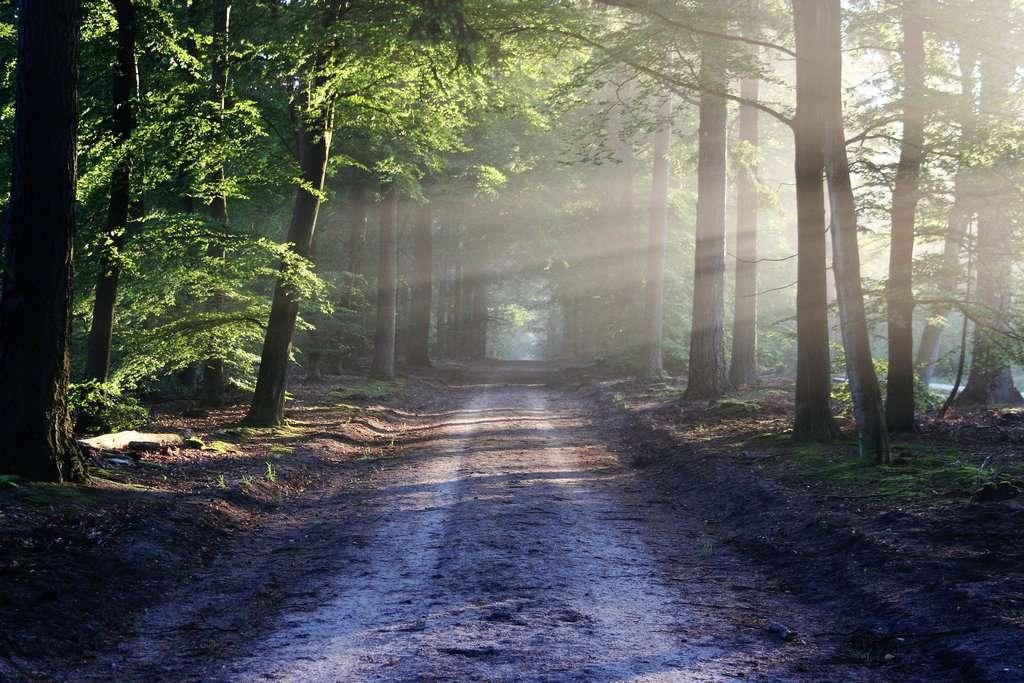 gambar pemandangan alam 1