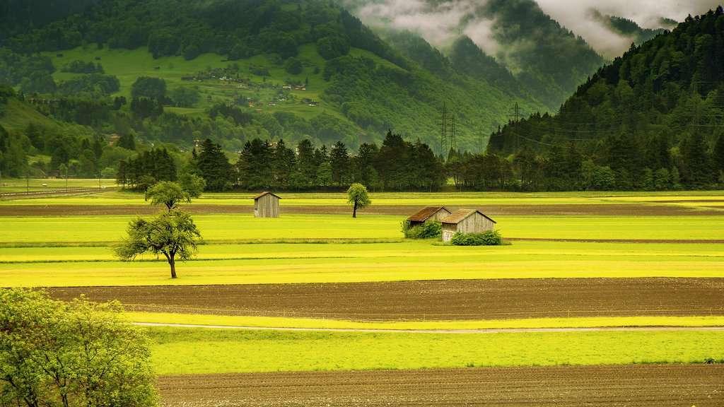 gambar pemandangan alam 15