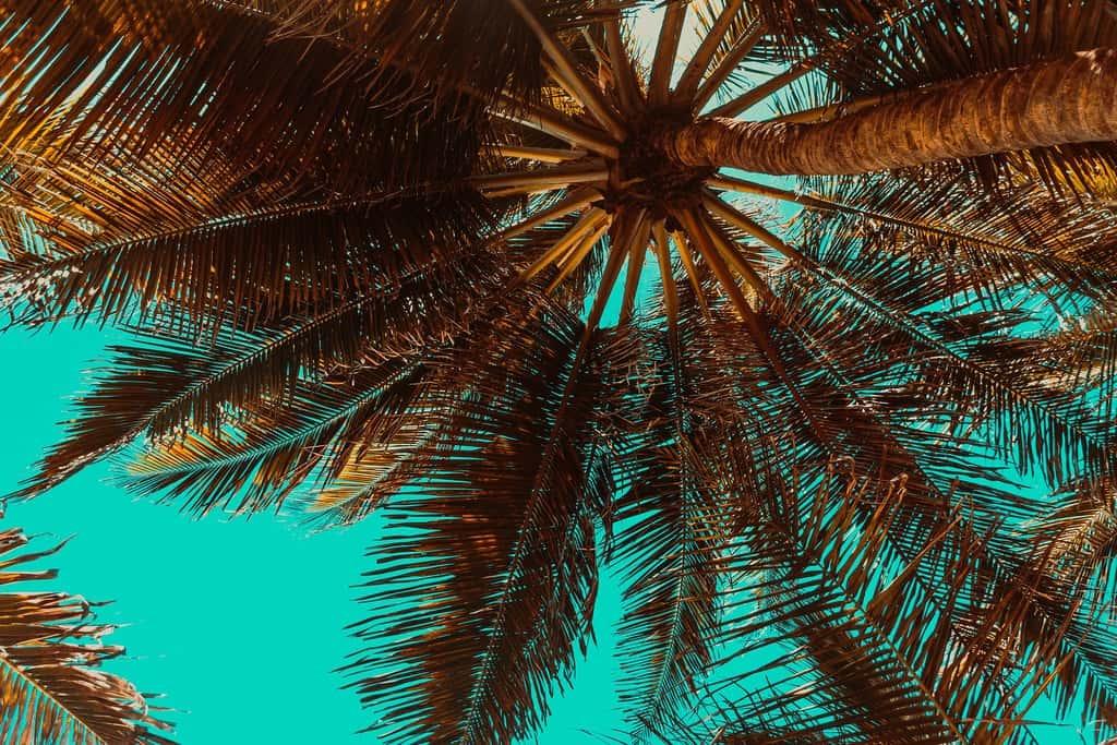 gambar pemandangan pantai dan laut 13