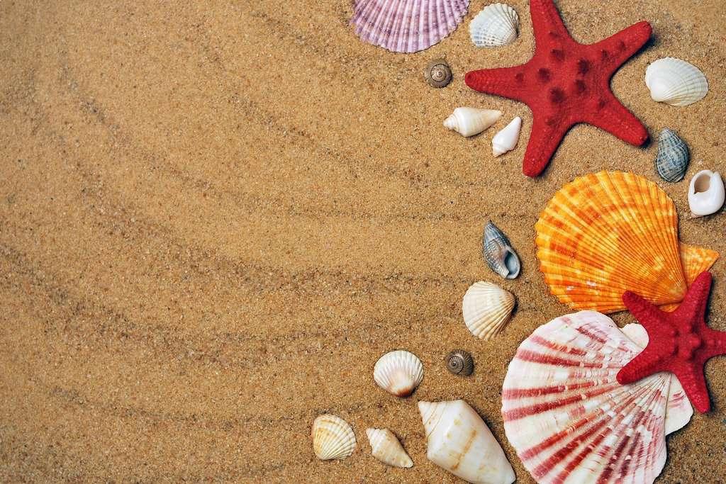 gambar pemandangan pantai dan laut 8