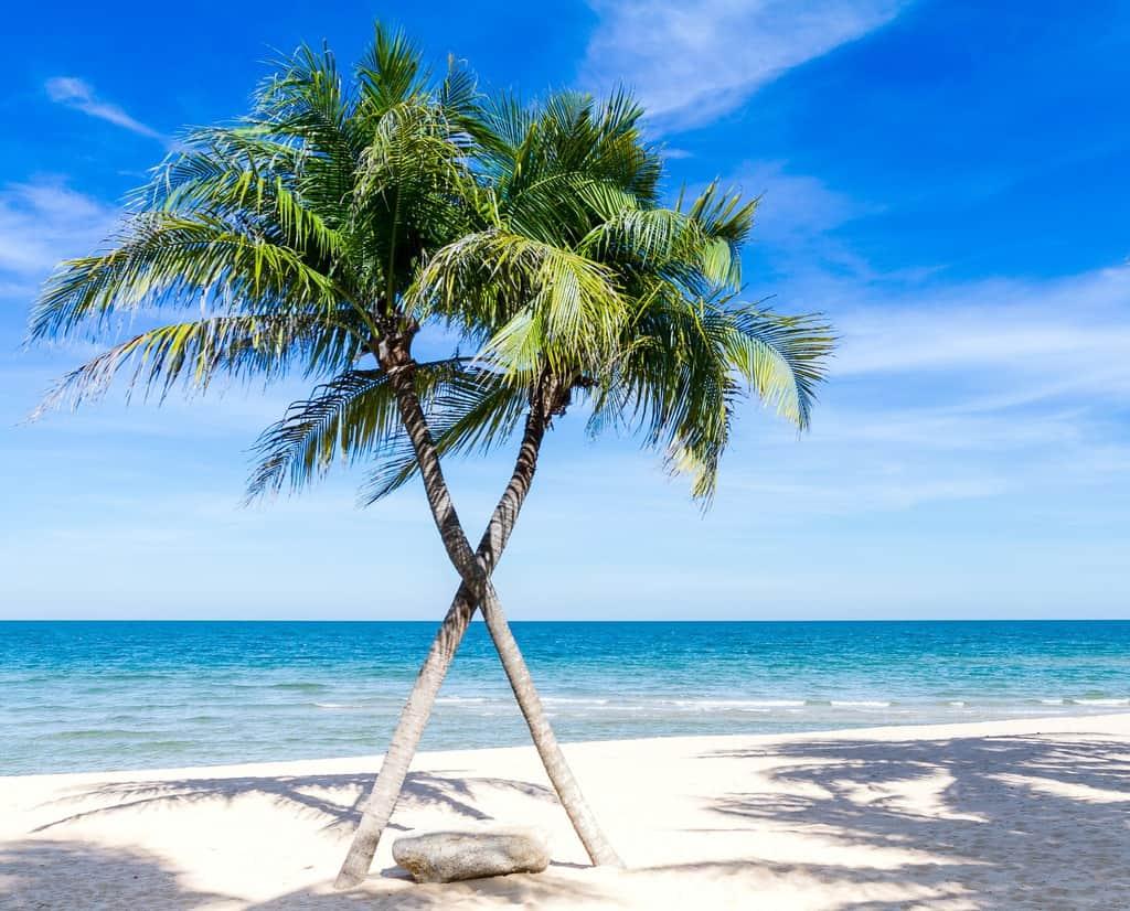 gambar pemandangan pantai dan laut 9